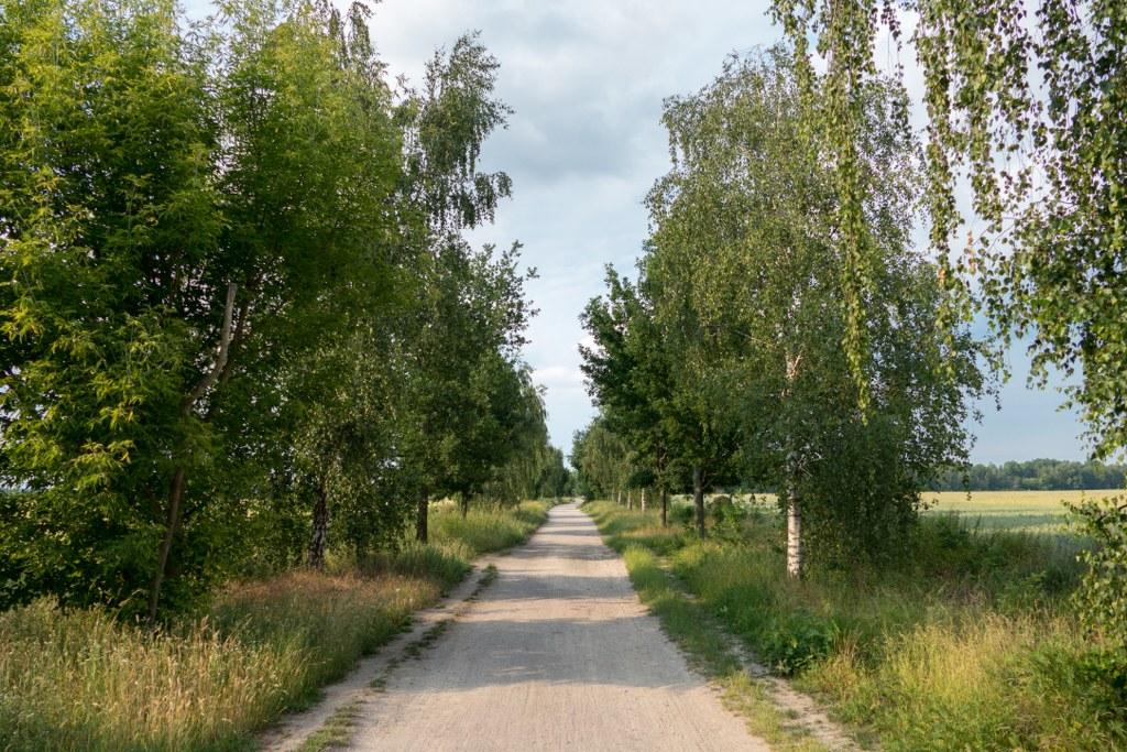 Marienfelder Feldmark - Spazierweg