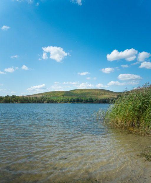 Arkenberger See - Das glasklare Wasser