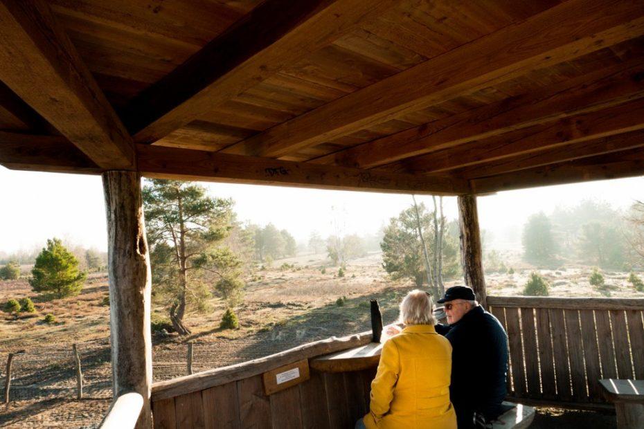 Schoenower-Heide-Picknicken-auf-dem-Aussichtsturm
