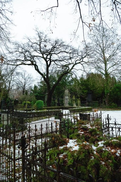 Friedhöfe am Halleschen Tor im Winter