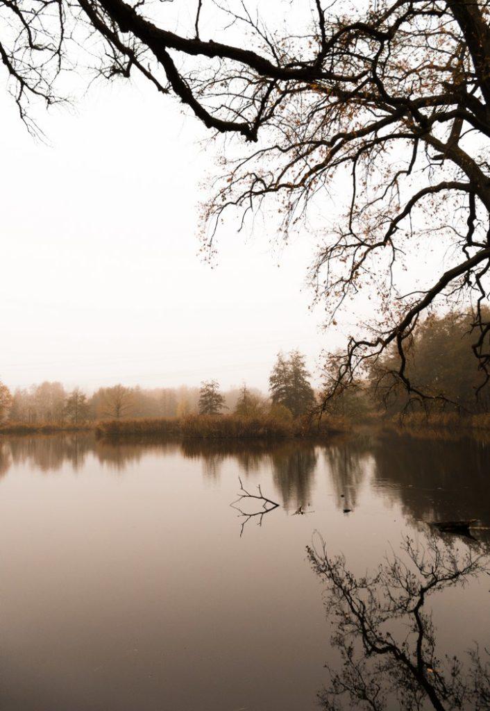 November Bogenseekette