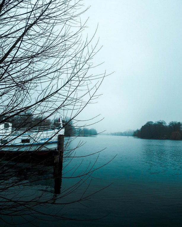 Spreeufer Plänterwald im Winter