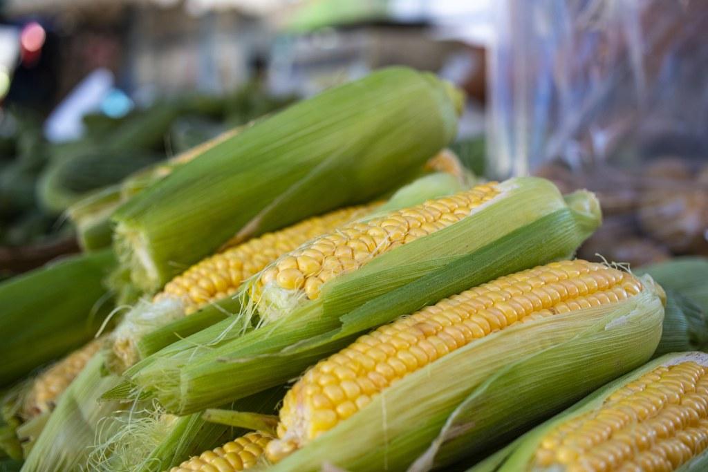 Maiskolben auf dem Markt
