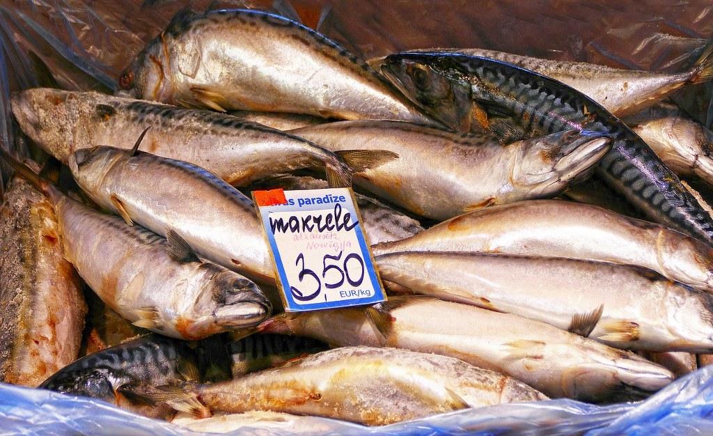 Makrelen auf dem Markt
