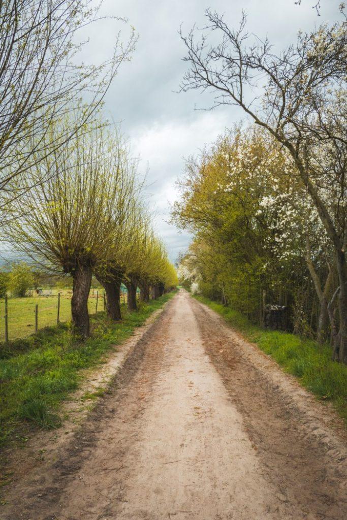 Spazierweg vom Vierfelderhof