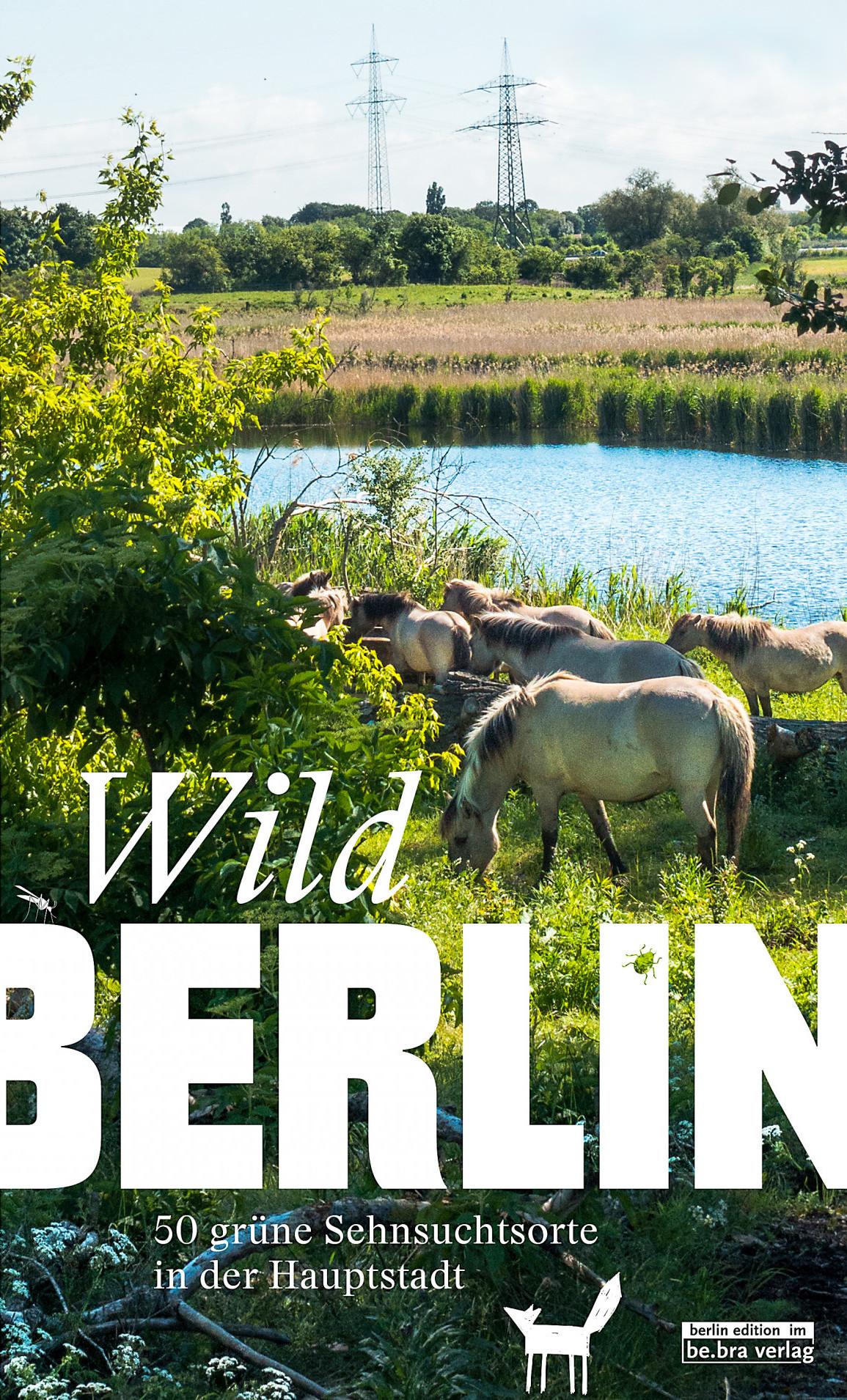 Wildberlin Cover